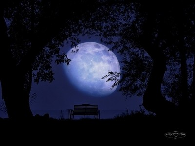 Romance Moon