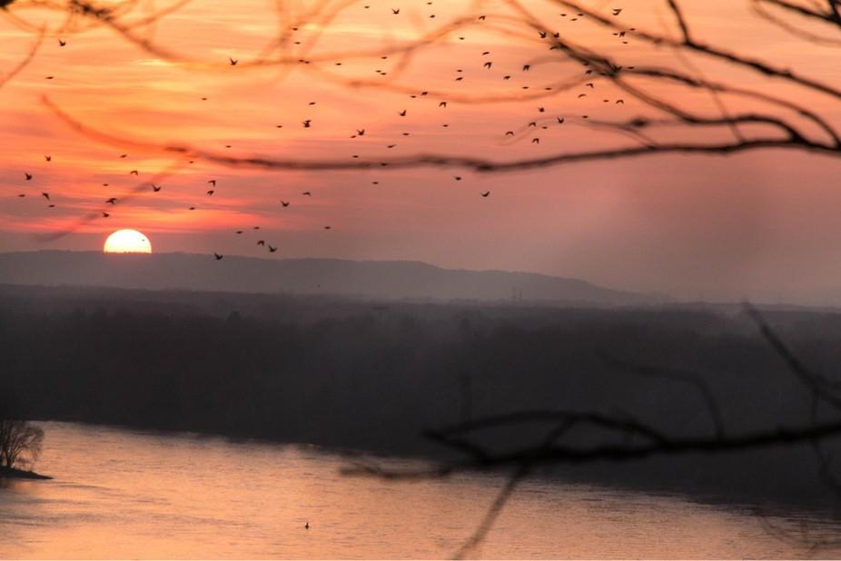 Sunset over the Danube river upperaustria