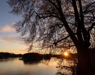 Last leaves and last sun on Oslo Fjord