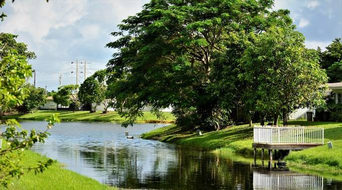 This is one of many Water Canals here in Florida, where some places you see decks and even small boats.