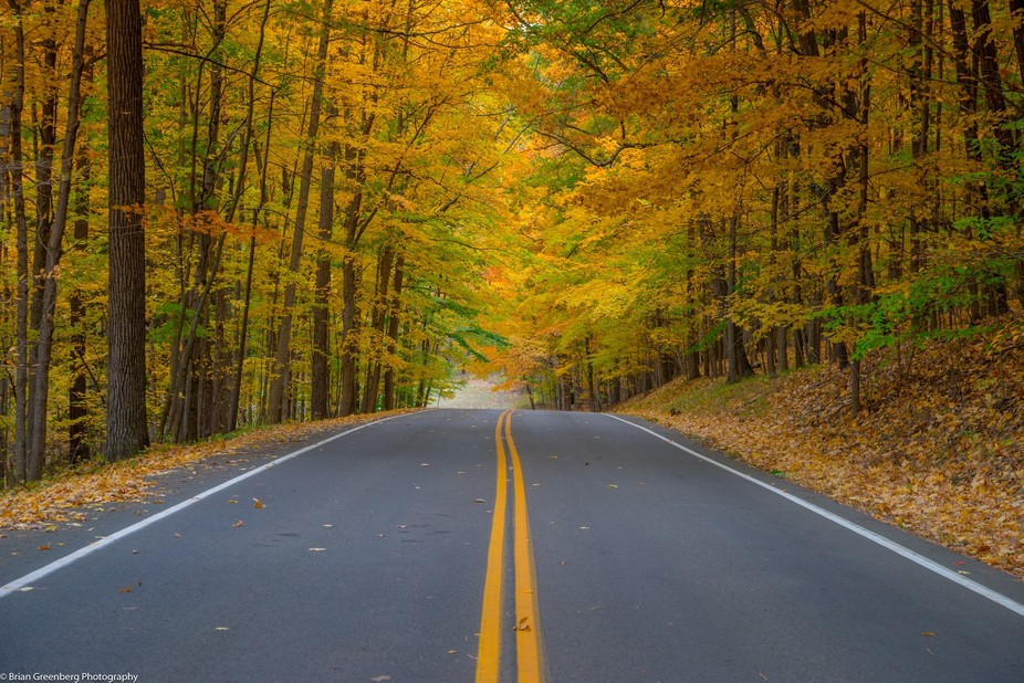 A road in New York during Autumn