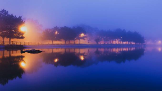 fog in the city park by Popov_Alex - Fog And City Photo Contest