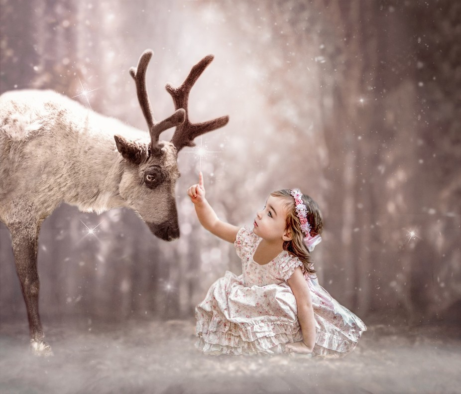toddler reaching for reindeer