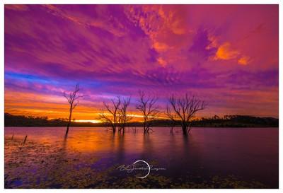 Lake Wyaralong