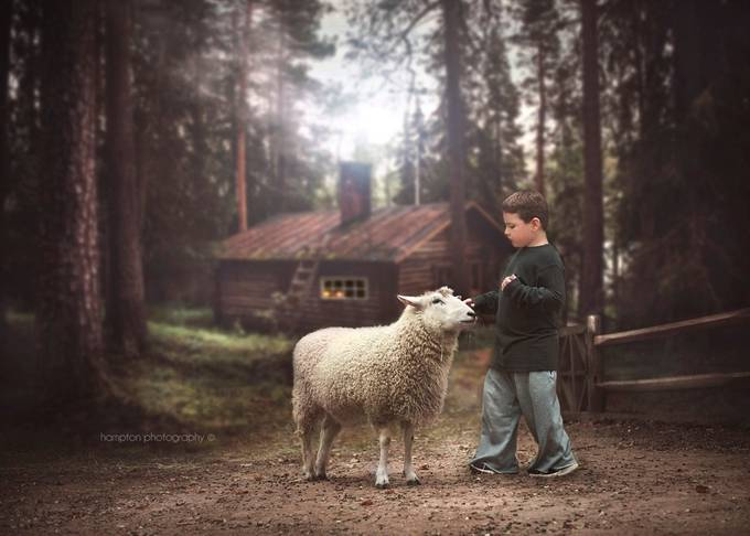 Grandma's House by HamptonPhotography - Farms And Barns Animals Photo Contest