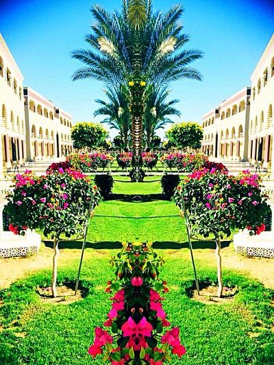 Taken in hugharda egypt the gardens