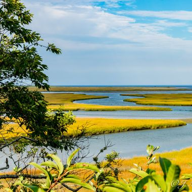 Fort Hill Eastham 5