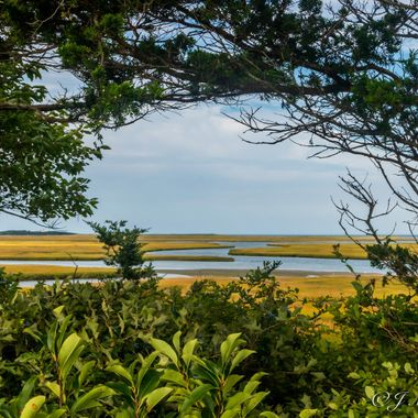 Fort Hill Eastham