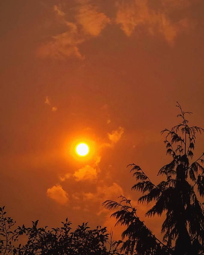 Fire season sun