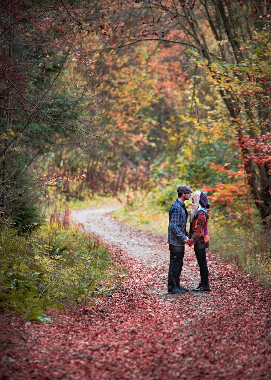 autumn love by pauljoinson - Rule Of Thirds Photo Contest v4