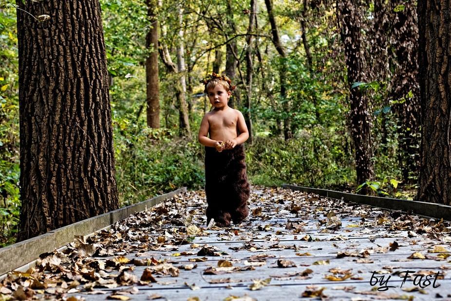 Sader in the woods crossing the bridge. Exploring!