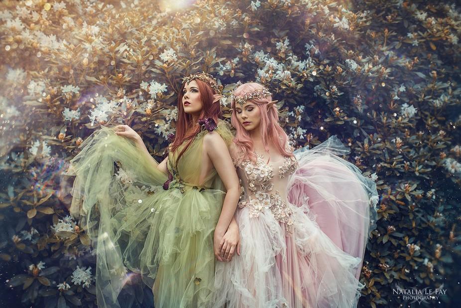 Models: Elvasyster