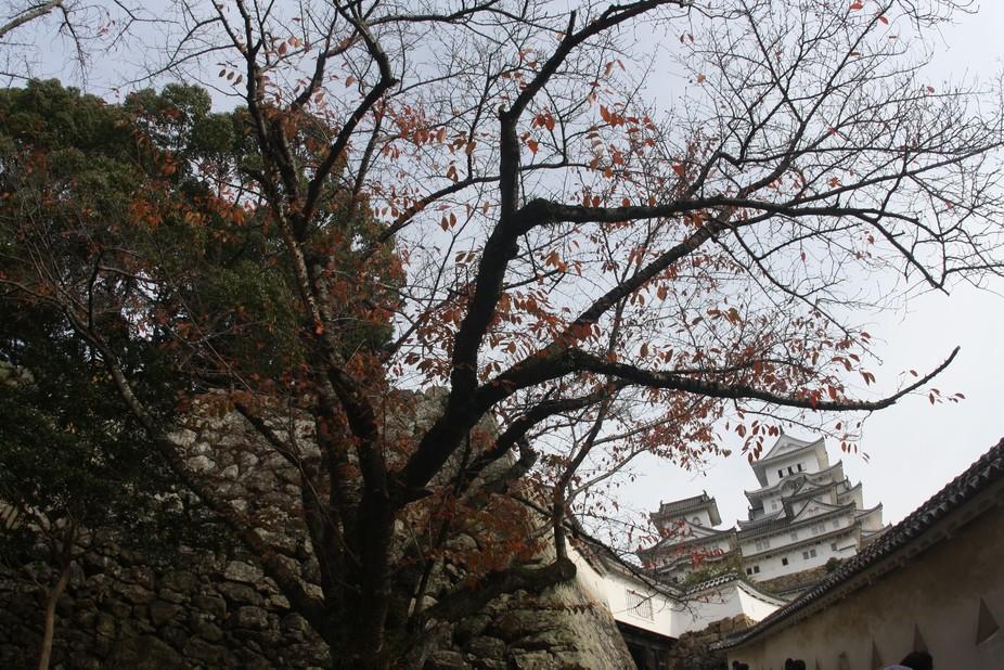 Himeji Castle, Japão