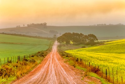 A rainy day on a muddy country road in South Africa.