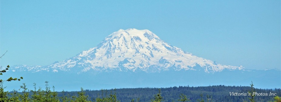 After all my trips to Washington, I finally got to see Mt. Rainier.  It was spectacular.