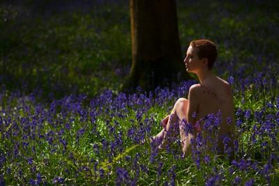 spring vibrances