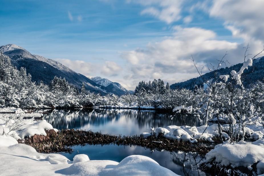 Lake Zelenci, located near Kranjska Gora, Slovenia, is the source of Sava Dolinka river, which to...