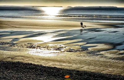 2 plus mans best friend strolling at sunset on a West Wales beach