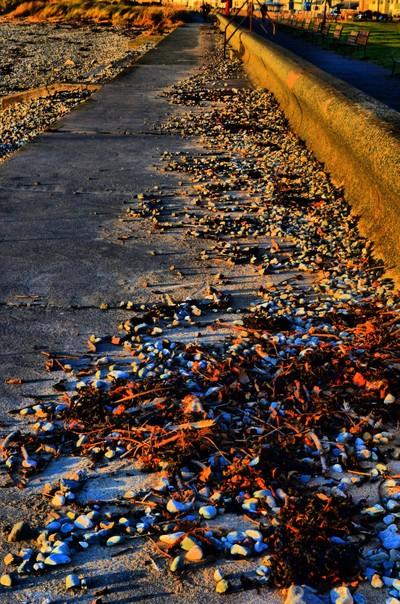 Promenade Clutter