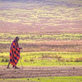 one of the Maasai on his daily journey - wearing red to keep the lions away