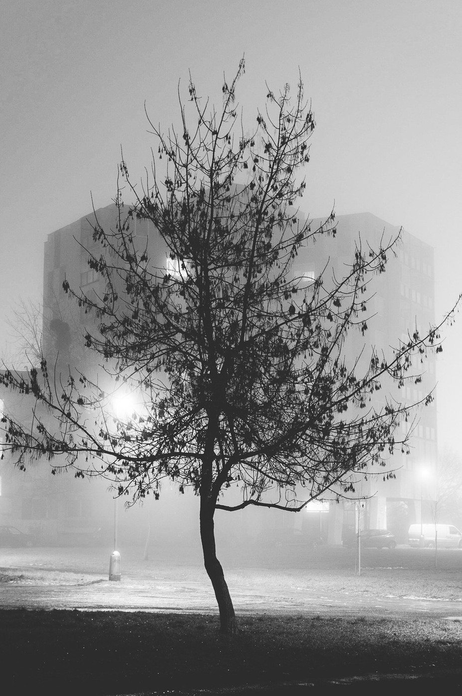 The mist by ErikSvec - Fog And City Photo Contest
