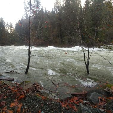 Stamp River Falls Provincial Park's raging river November 26, 2017