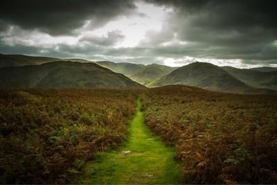 Bracken Mountains