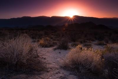 Morning in the desert of California