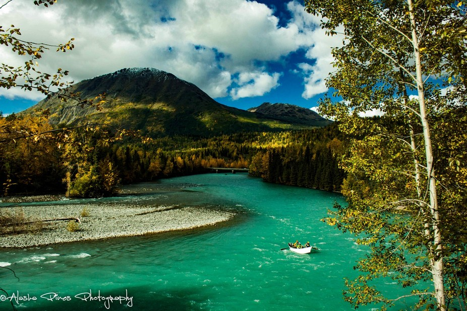 This is the Kenai River, aka my happy place during the summer.  Yes, the color of the river truly is that color, no extra editing. The water is filled with glacial silt, which changes it's color.