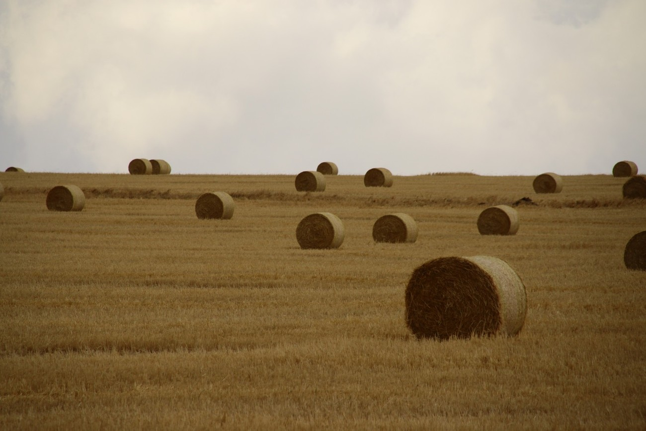 Rolling harvest