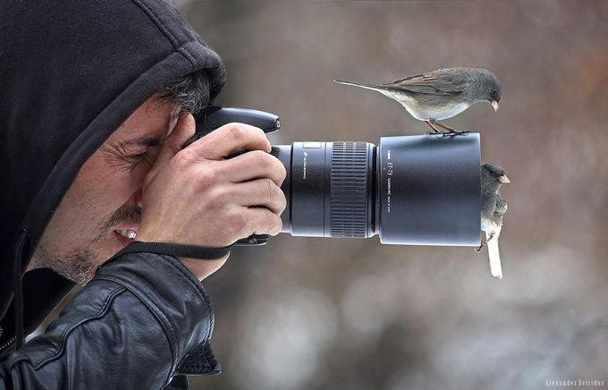 Birdhunter by Alexander_Sviridov - Social Exposure Photo Contest Vol 13