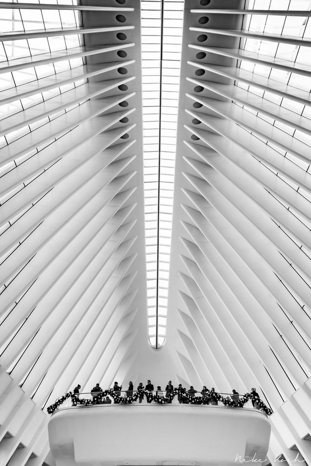 Under the Spine by framing-places - Ceilings Photo Contest
