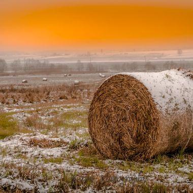 Lithuania,Kaunas countryside, the fields