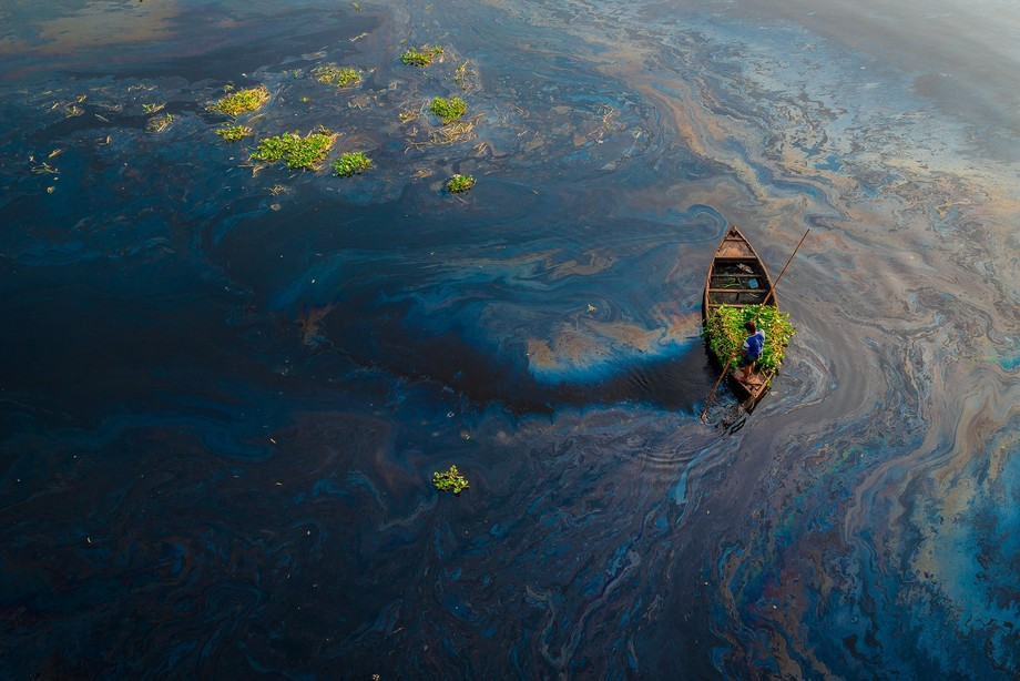 The river is being highly polluted by oil spilling ! A boat man was collecting water hyacinth for...