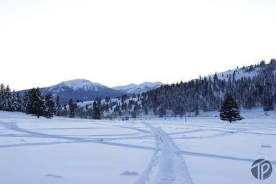TheTylerPrice_Island-Park-Idaho_0967