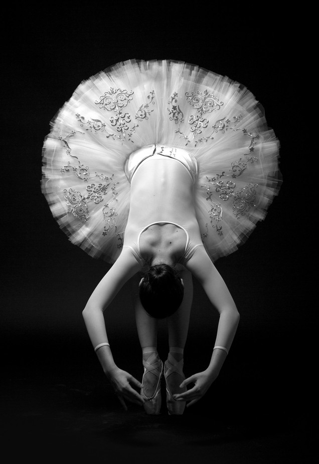 White Dance by Daniel_A_Angulo - Composing With Circles Photo Contest