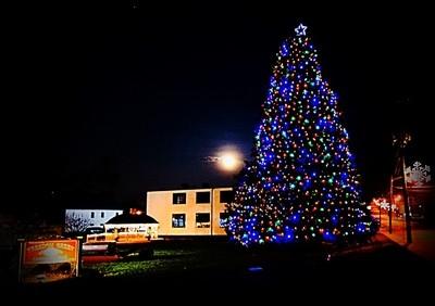Community tree and moon