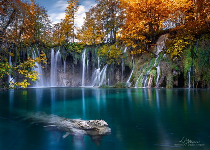 Plitvice Lakes by FredGramoso - Fallen Trees Photo Contest