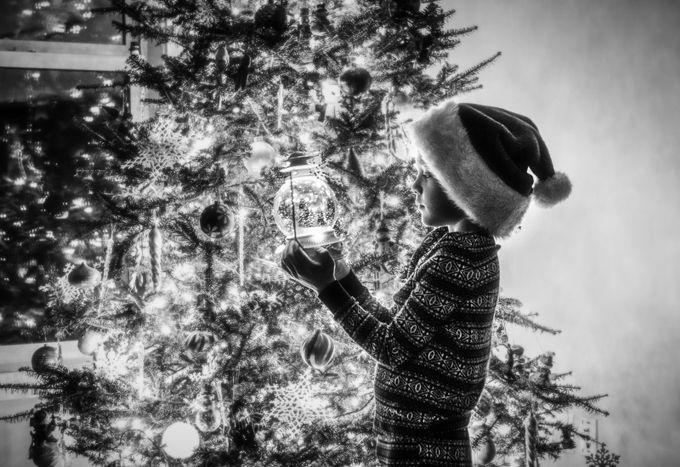 Christmas Magic  by JenniferKapala - Holiday Lights Photo Contest 2017