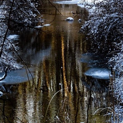 Late afternoon reflection on Halfway Brook after the snow.  #trailsend #reflection #brook #winterwonderland #wander #wetlands #woods #outthebackdoor #backyardnature #canon_photos #canonwhatelse #canonglobal #naturalnewyork #newyorkoutdoors #adirondackexpl