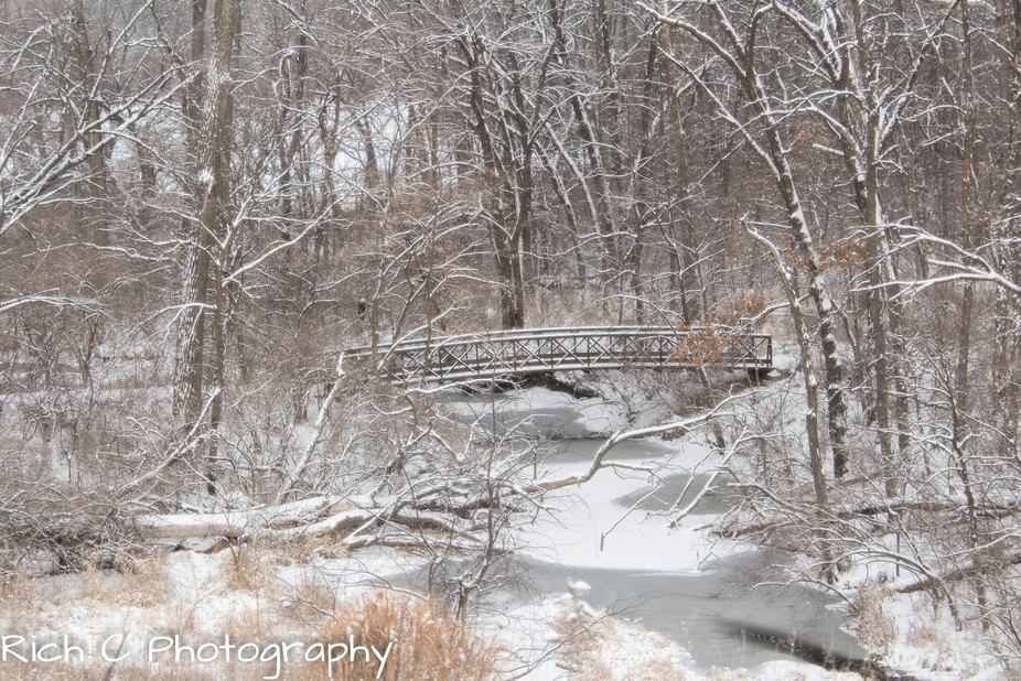 A road hunting trip through Iowa and saw this bridge through a state park