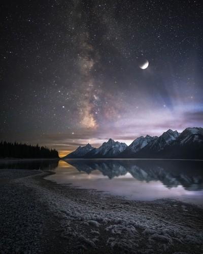 Stellar Legacy