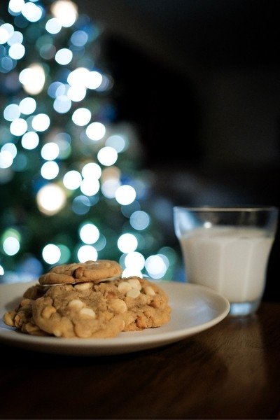 Quick snapshot of the cookies a d milk the kids left out for Santa.