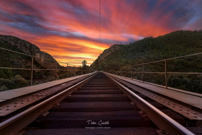 Save The Day by pedroquintela - Composition And Leading Lines Photo Contest