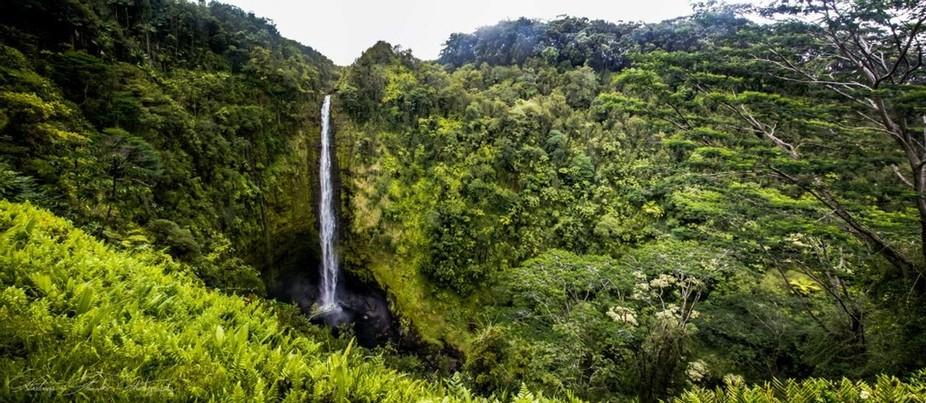 Panorama of the beautiful Akaka Falls on the Big Island of Hawaii.