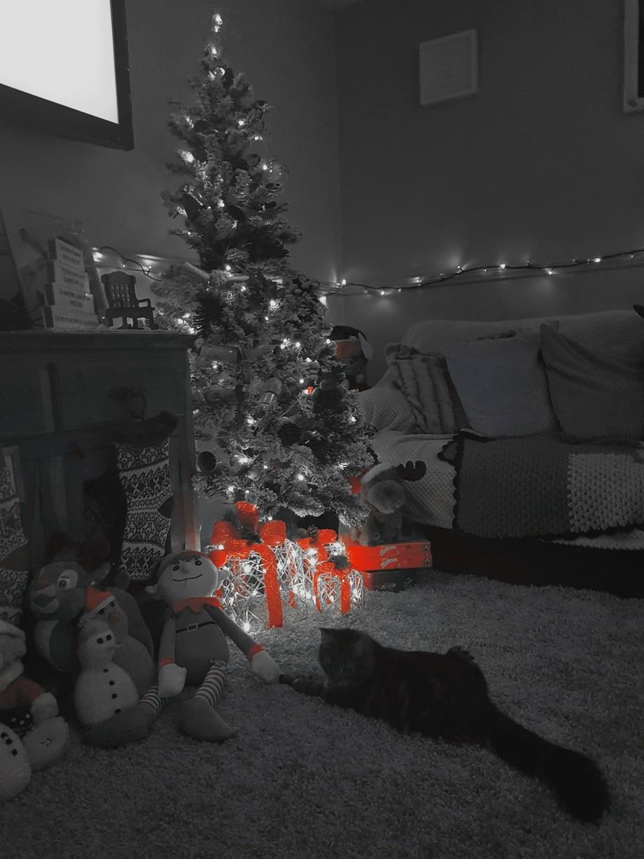 A Christmas scene.