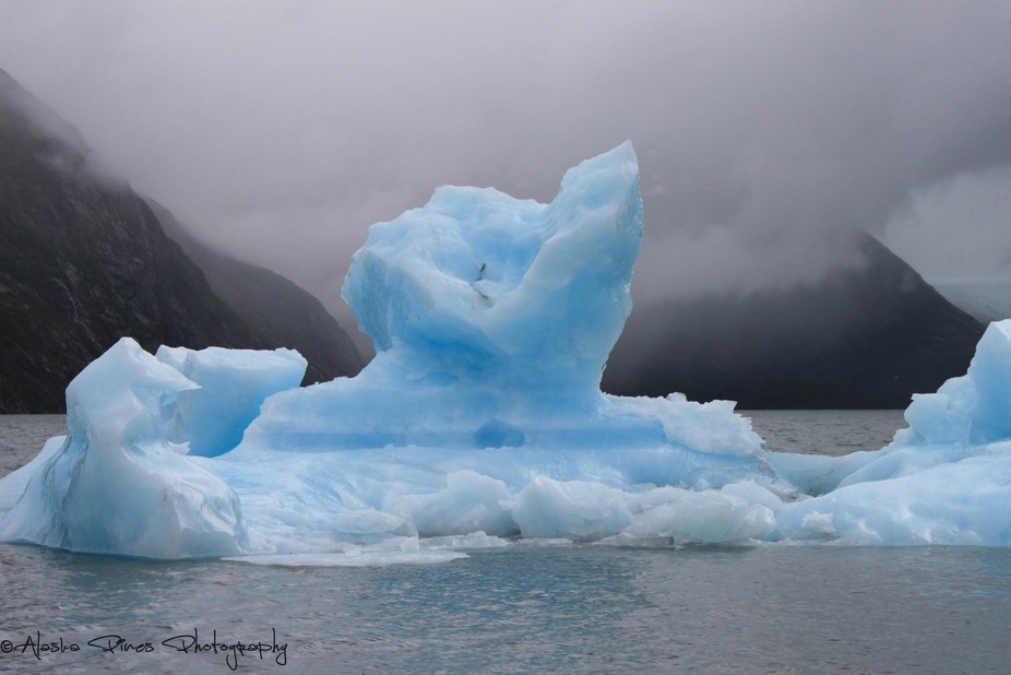 This is an iceberg that came off of the Portage Glacier outside Girdwood, Alaska. You get the bri...