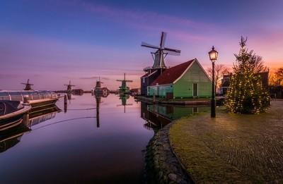 A Merry Dutch Christmas