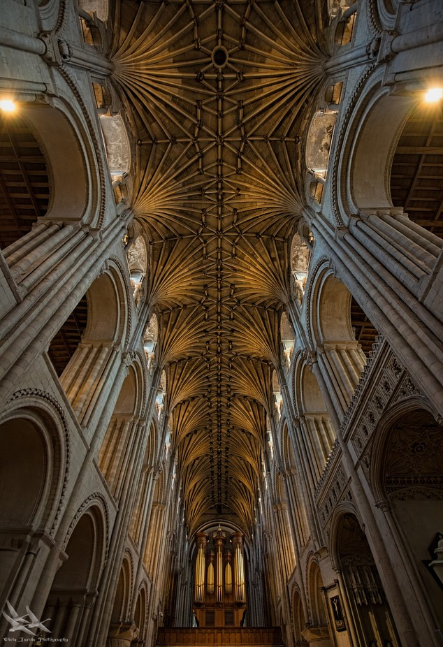 Arches by chrisjarvis - Ceilings Photo Contest