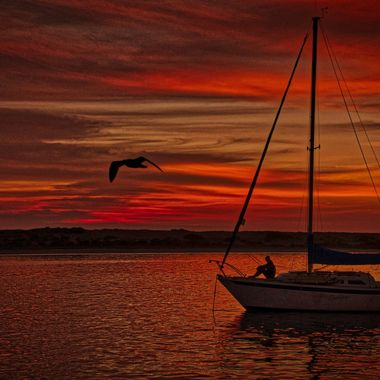 Sailboat and Gull at Sunset, Morro Bay Ca 20171208,  #361 of 365
